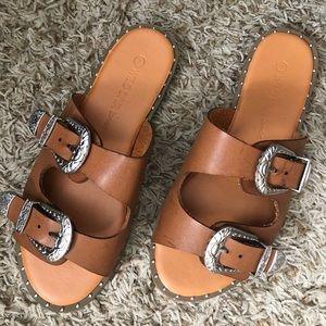Shoes - Wild diva buckle slides